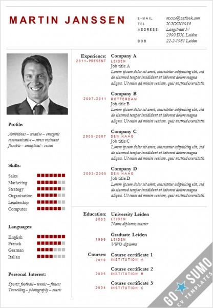 CV Template Boston, cv manager