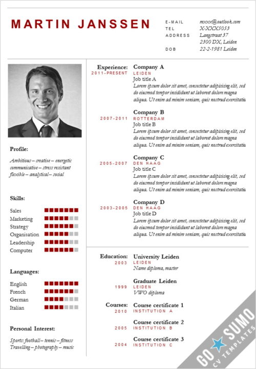 CV Template Boston, cv manager