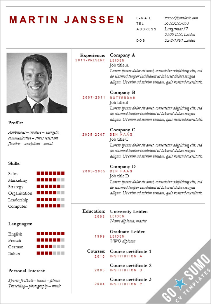 Cv template boston go sumo cv template for Reusme template