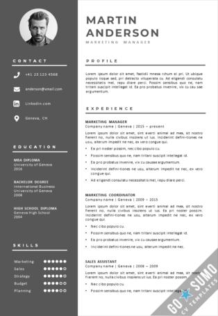 Word CV Template Geneva
