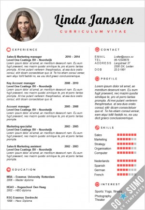 CV Template Madrid