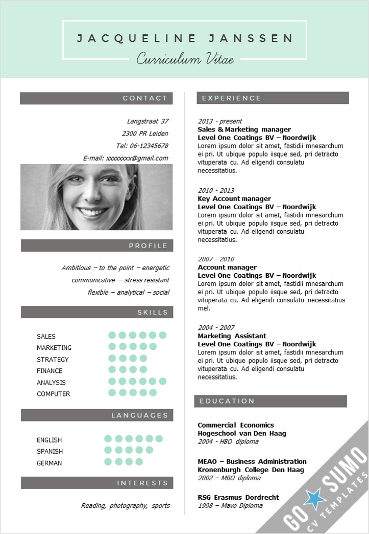 Cv Template New York - Go Sumo Cv Template