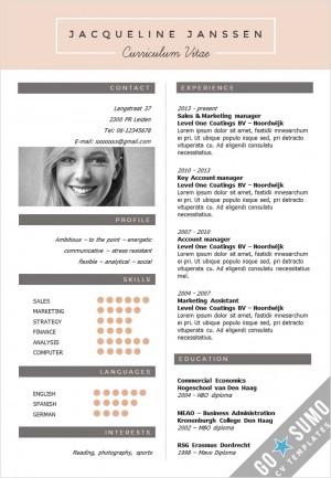 CV Template NY