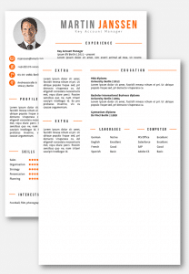 CV Template Word 2 pages