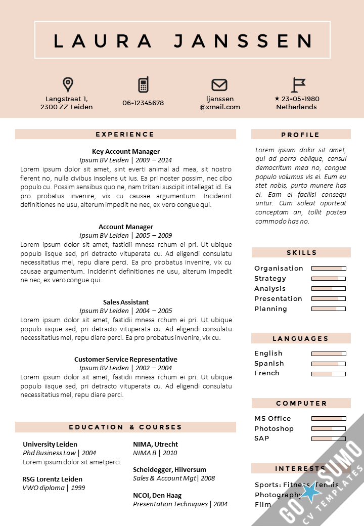 resume format 8 best cv format word document. Black Bedroom Furniture Sets. Home Design Ideas