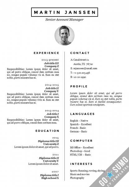 cv resume template malmo