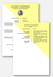 cv resume template in Word