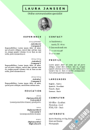cv resume template stockholm green version