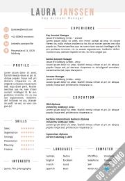 CV template Word Salzburg