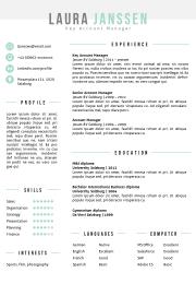 CV Template Salzburg Green