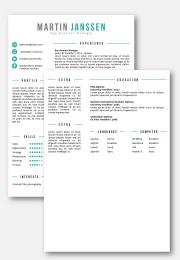 CV template Frankfurt 2nd page