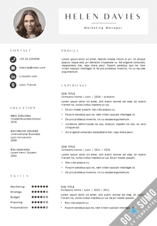 [business] CV Template Lyon