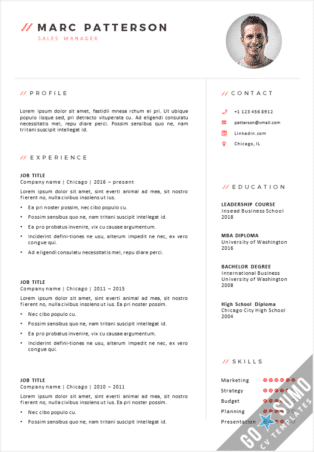 CV Template Chicago