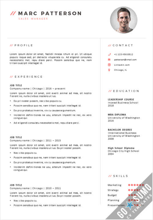 CV Template Chicago