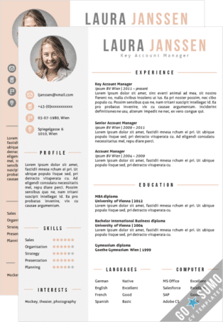 Word CV Template Vienna 2 colour versions included