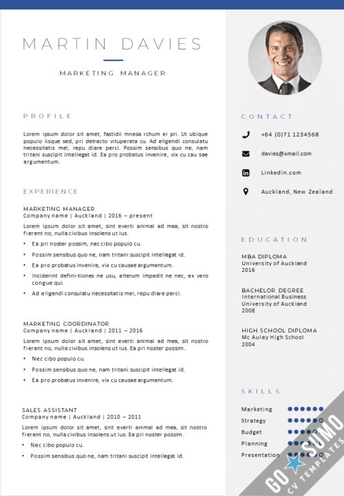 Best CV template